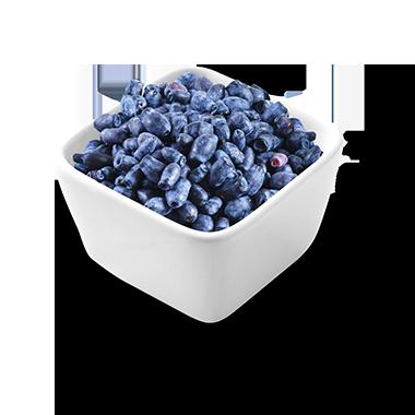 Haskap Berry<br> GRADE A